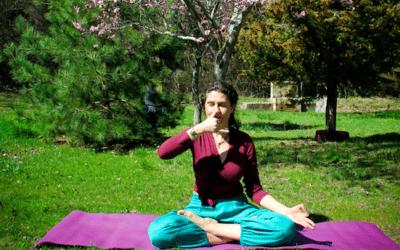 El Yoga Ayurvédico y la Marmaterapia