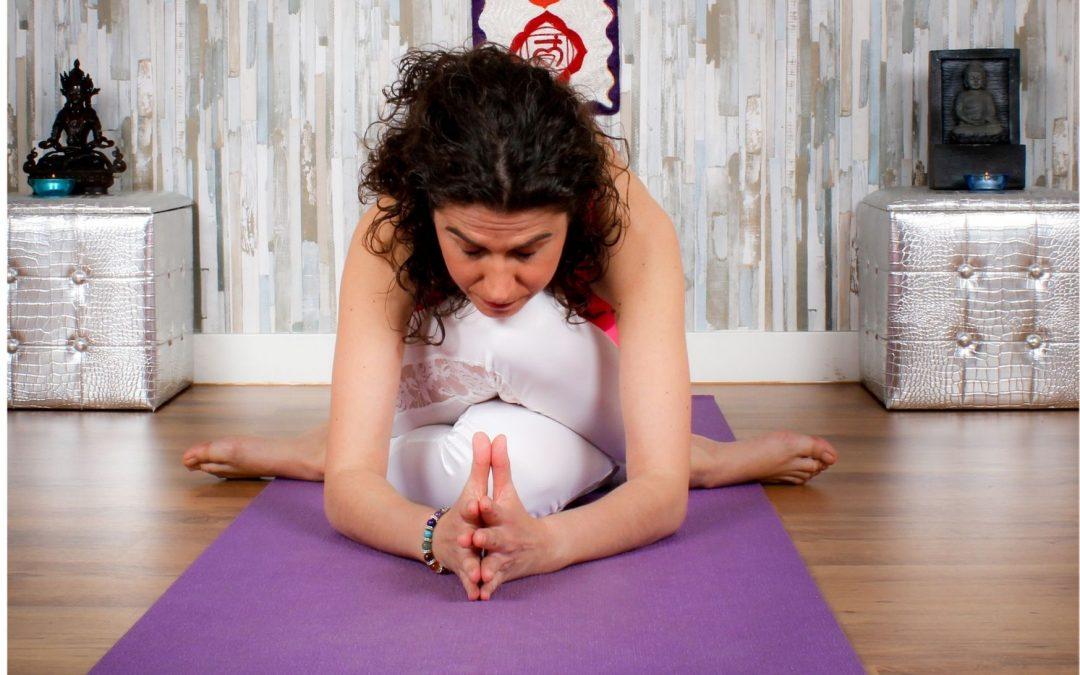 Vuelta al Yoga de la intimidad