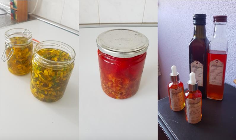 Como elaborar aceite de Hipérico