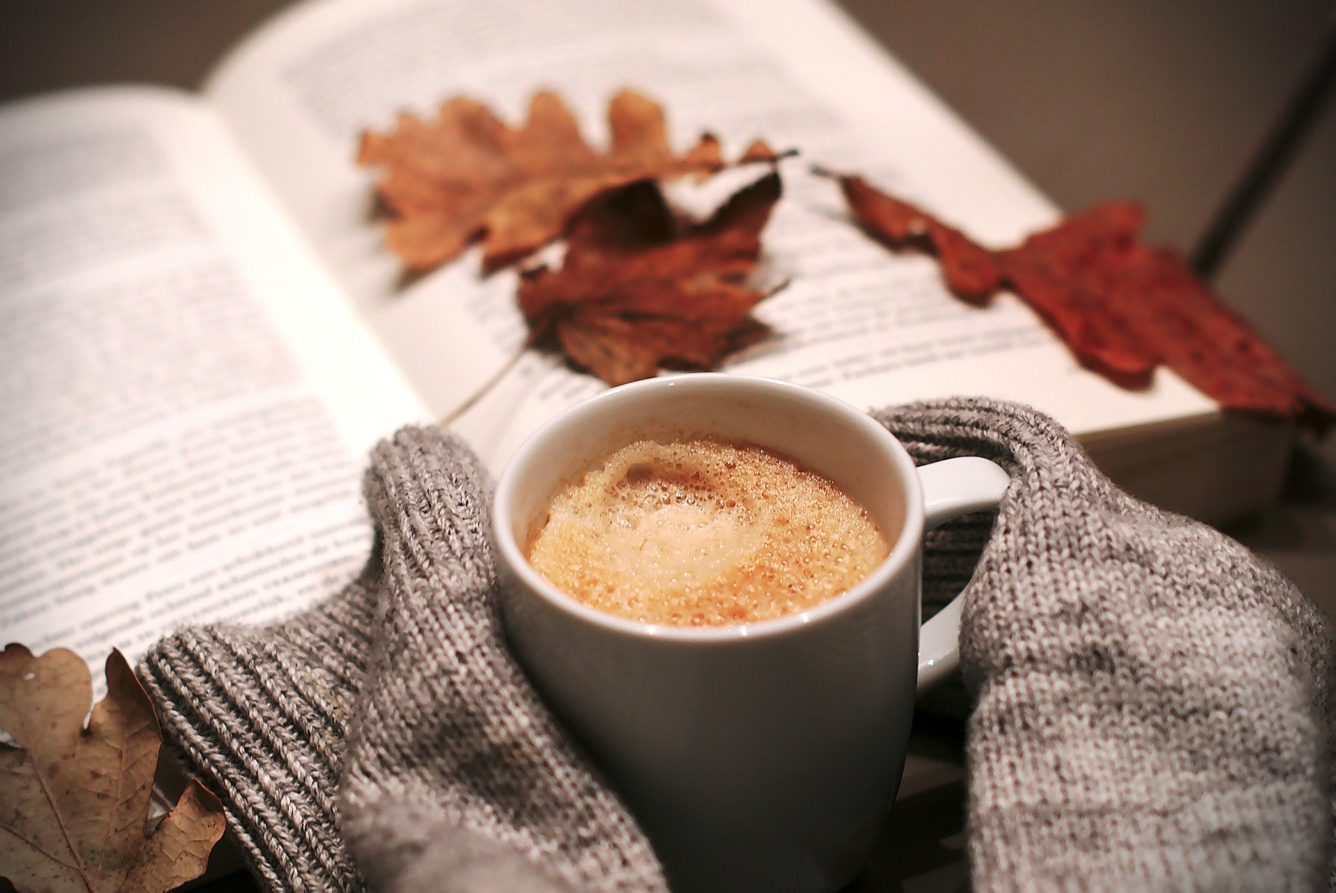 Ilustra post sobre rutina de otoño ayurveda, terapias ayurveda, talleres ayurveda, consultas ayurveda